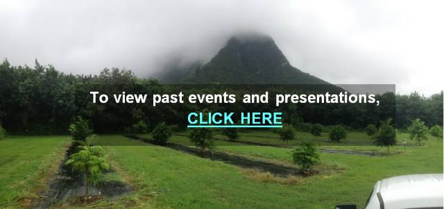 Image of a papaya field--link to past events