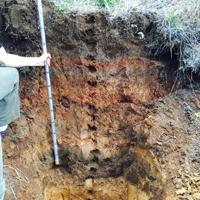 Soil test pit.
