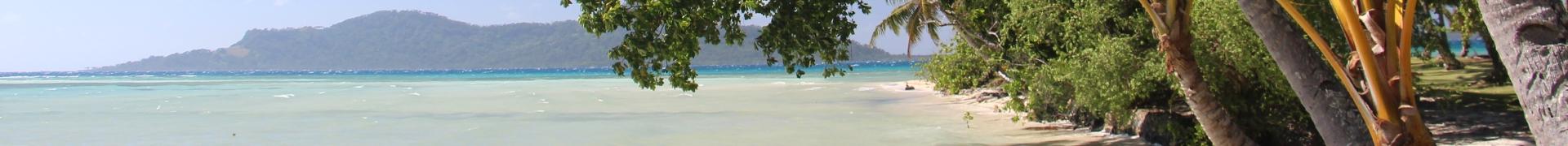 Coastal strand vegetation in Chuuk, Micronesia.ate change.