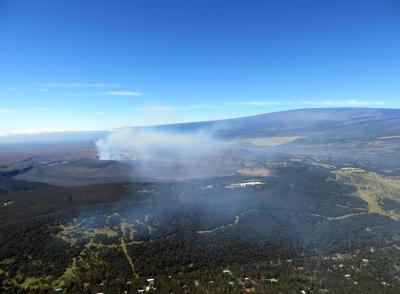 Volcanic emissions injury to plant foliage