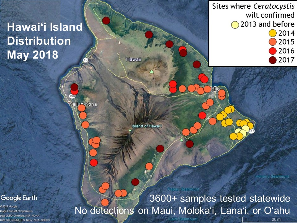 Hawai'i Island Distribution Map showing sites where Ceratocystis wilt confirmed.