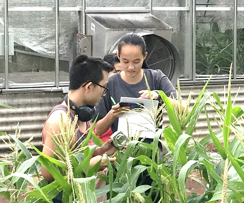 TAE students working in the field