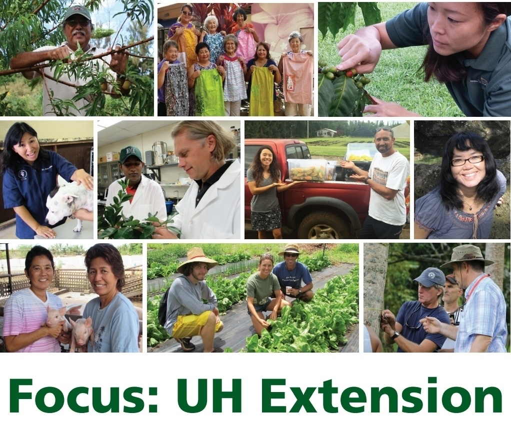 collage of Extension Agents in the field
