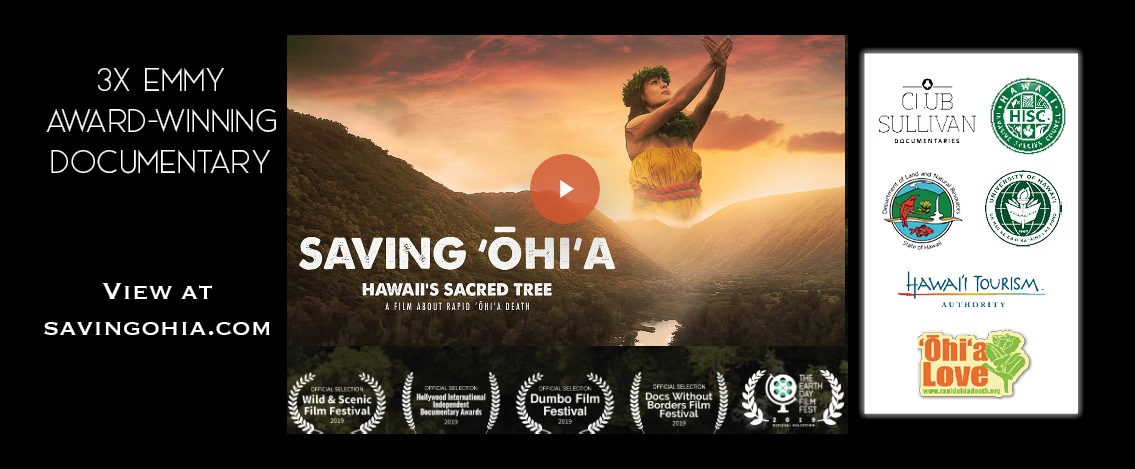 Saving Ohia-Hawaii's Sacred Tree has won 3 Emmy Awards! Check out this film capturing the story of Hawaii's battle to save ohia from the threat of Rapid Ohia Death disease.