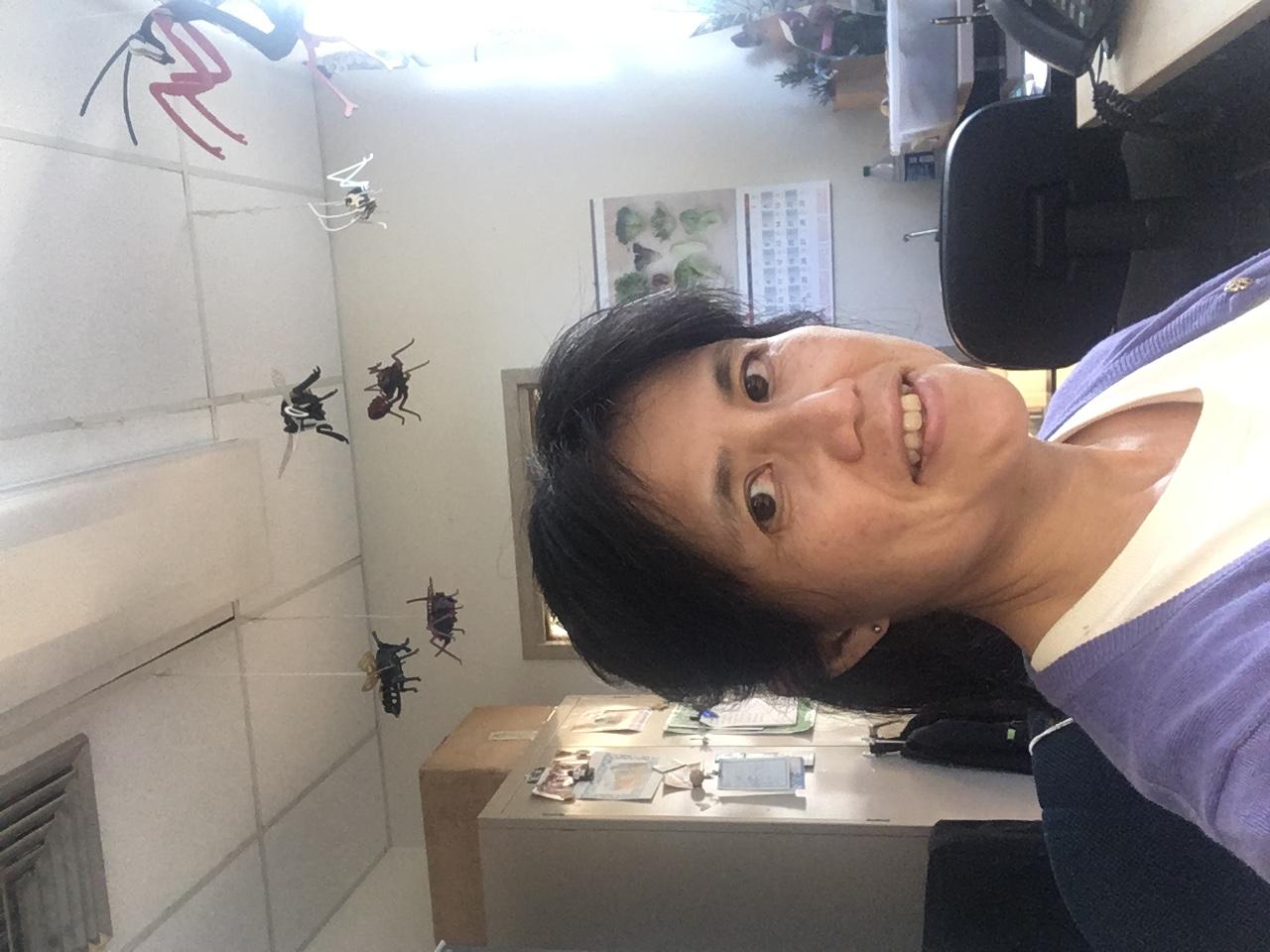 Dr. Koon-Hui Wang