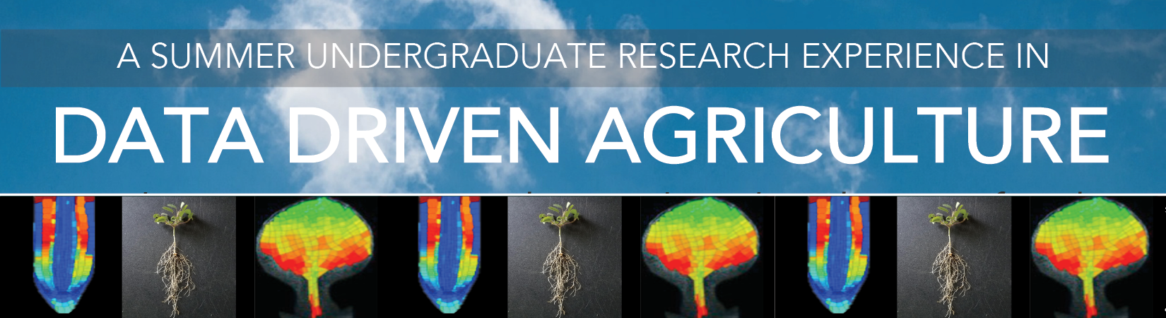 Data driven Ag research for undergraduates