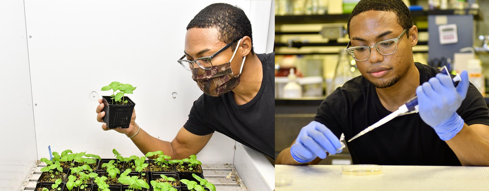 Using CRISPR/Cas9 Tech